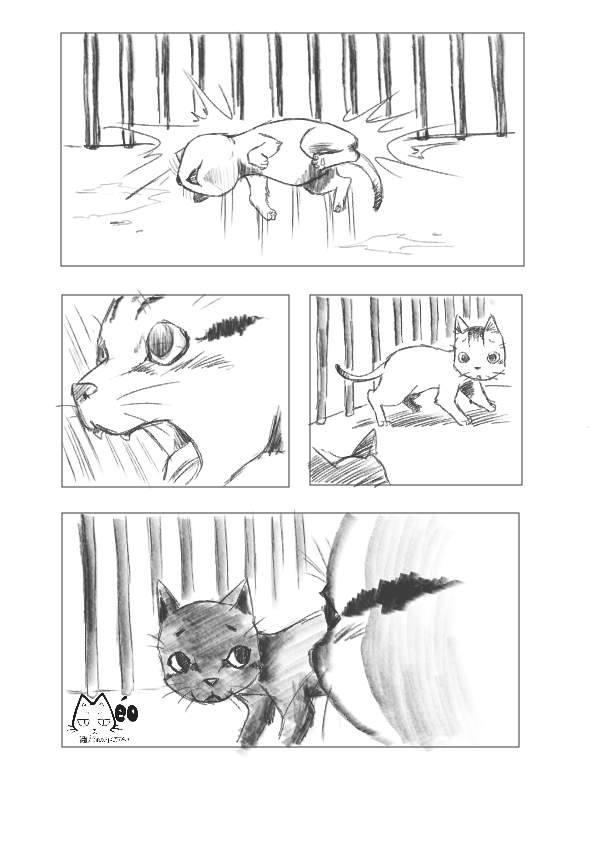 Meo hoang 12